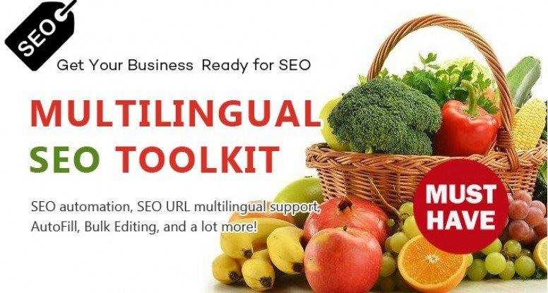 Multilingual SEO Toolkit - Bulk Editing, AutoFill and more!